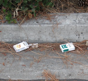 12 Ways You Can Prevent Litter