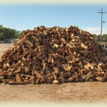 Eco Friendly Firewood- Keep It Clean And Safe