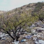 Arizona Fights Border Trash With New Website