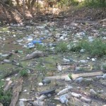 Taxpayer Cost Of Litter In Georgia= $90 Million
