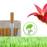 Biodegradable Cigarette Filters Sprout Into Flowers