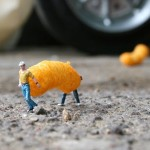 Little People Project And Litter