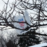 Plastic Bags Cost Austin Taxpayers $850,000 A Year