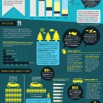 Eco-Graphic: The High Cost Of Consumerism