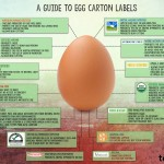 The Mystery of Egg Labeling