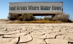 drought-california-3
