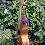 17 Ways To Reuse Stringed Musical Instruments