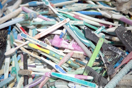 NOAA found these toothbrushes on Midway Atoll, 1,300 miles from the nearest city Via Twitter