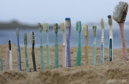 HONOLULU, HAWAI : UNITED STATES OF AMERICA Toothbrushes are lined up on Kahuku beach, Honolulu, Hawaii, 26th October 2006. Greenpeace are highlighting the threat that plastic poses to the world's oceans. GREENPEACE / ALEX HOFFORD